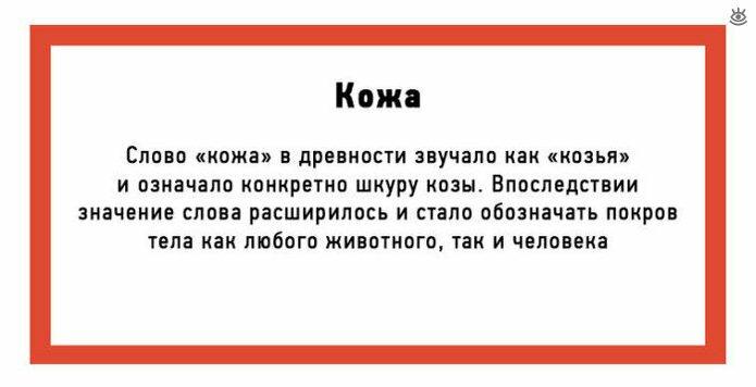 Нерусские слова, ставшие русскими 4