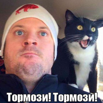 Чудаки-люди и забавные звери в фото смешных фото приколов