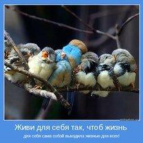 Фото приколы Начинаем с себя! (34 фото)