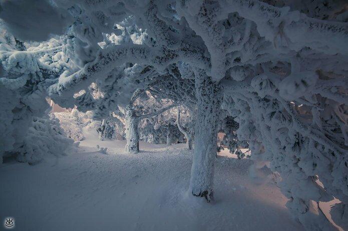 Пятигорская зима 5