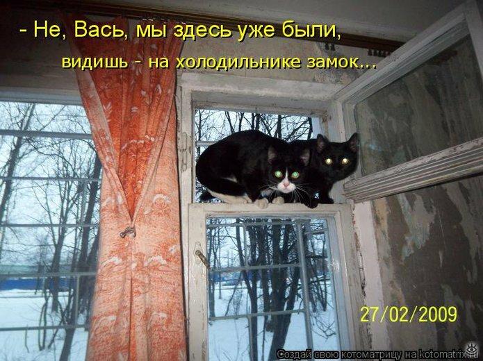 Чудная котоматрица 23