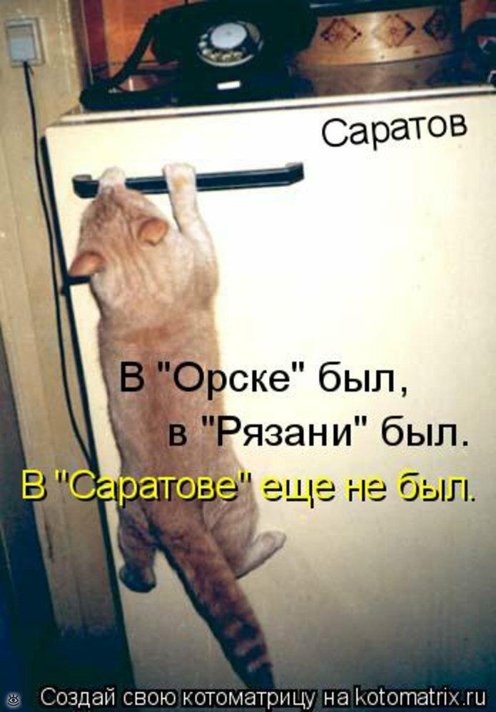 Чудная котоматрица 26