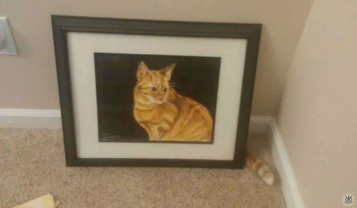 Кошачьи фото, сделанные точно в момент 1