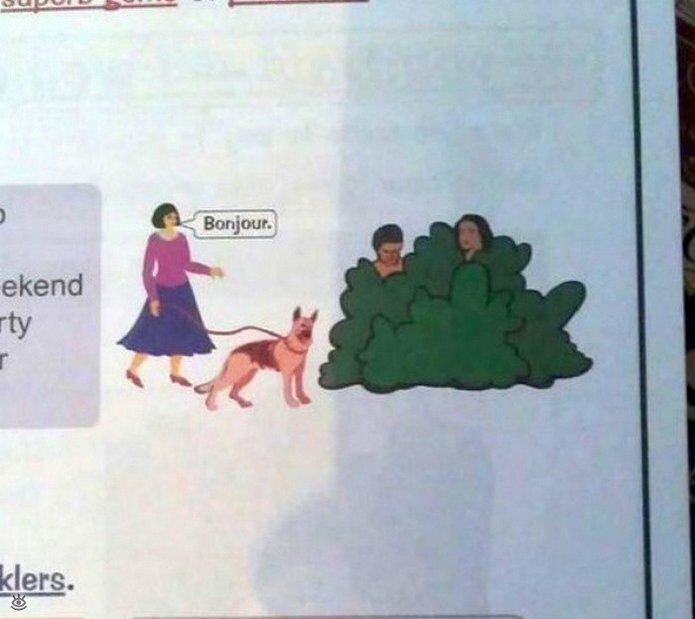 Нелепости странности из учебников 8