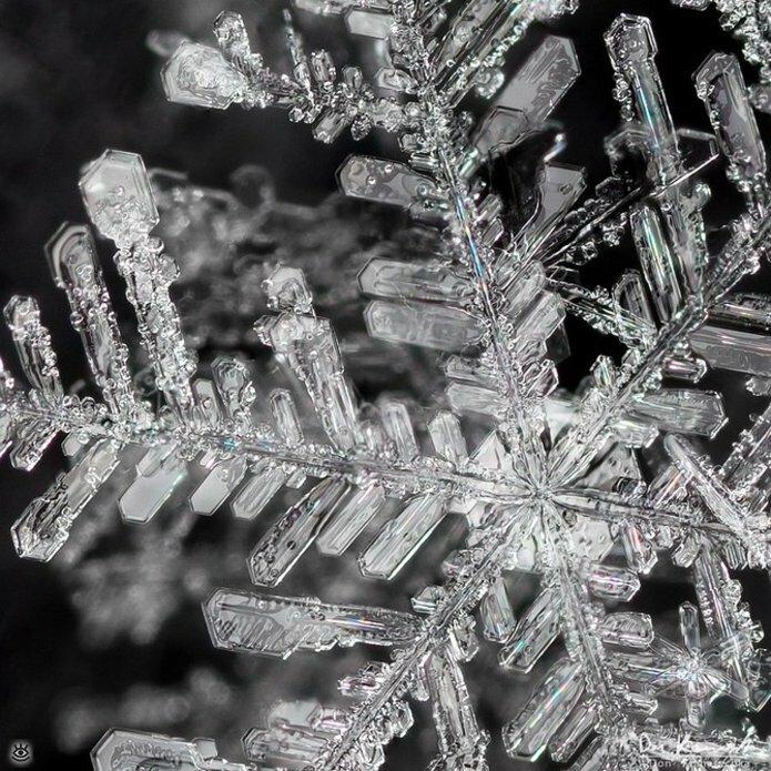 Волшебство снежинок 4