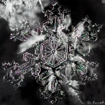 Волшебство снежинок