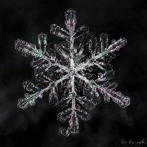 Фото приколы Волшебство снежинок (20 фото)