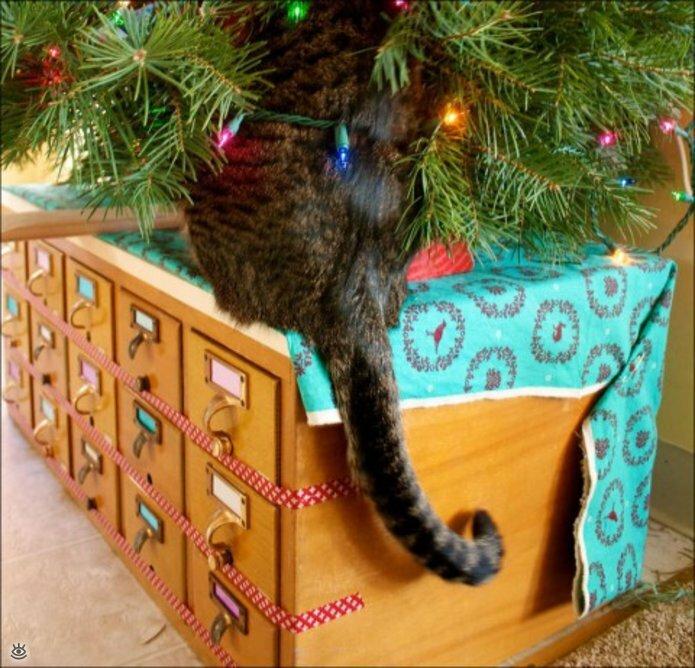 Новогодние котяры 18