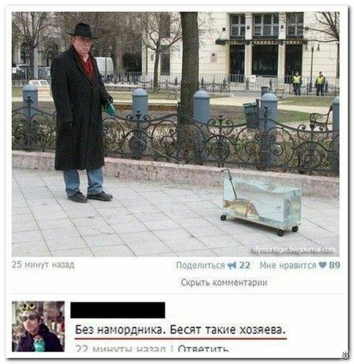 Комичные комментарии 26