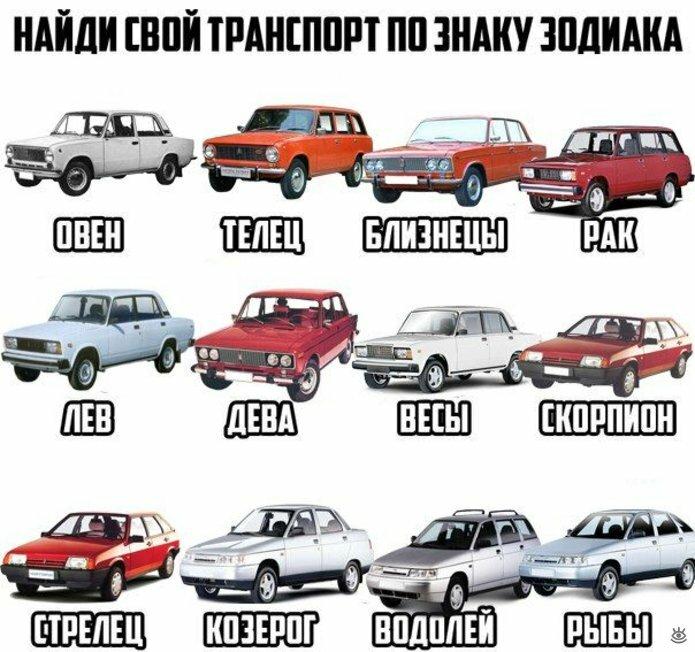 Дорожные и автокурьёзы 3
