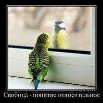 Фото приколы И всё-таки мы вертимся! (30 фото)