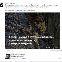 Фото приколы Комментарии комичные и остроумные (36 фото)