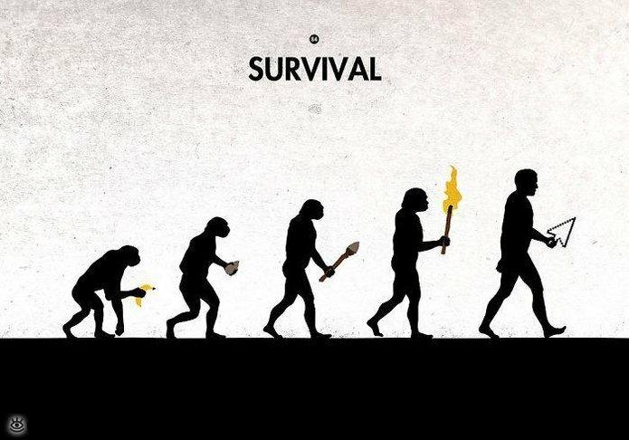 Смешная эволюция 15