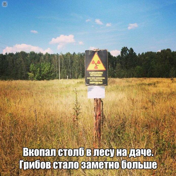 f_87366.jpg