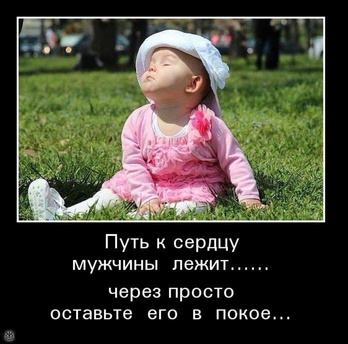 Берегите голову - там может быть мозг! 0