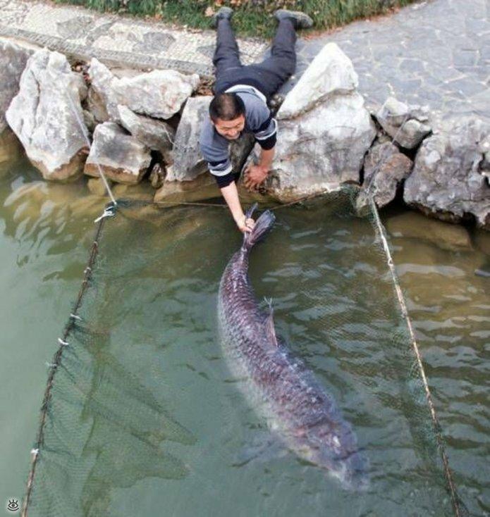 Прикольные фото для рыбака