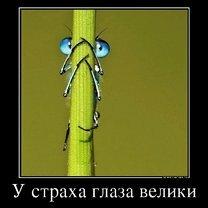 Фото приколы Выгляди естественно! (39 фото)