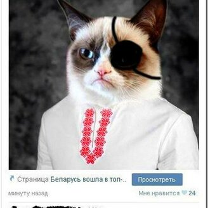 Фото приколы Безграничное остроумие в комментах (34 фото)