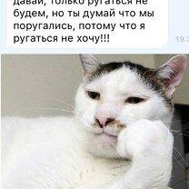 Фото приколы Смешная ерунда в фотках (31 фото)
