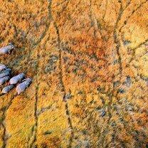 Фото приколы Природа с высоты (15 фото)