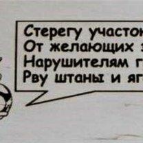 Фото приколы Осторожно, злая собачонка! (15 фото)