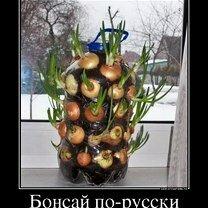 Фото приколы Радуйся мелочам! (39 фото)