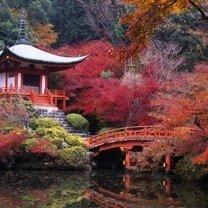 Фото приколы Красивая осень (23 фото)