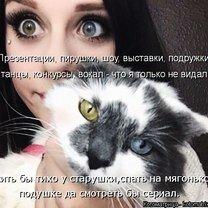 Чудаковатая котоматрица смешных фото приколов