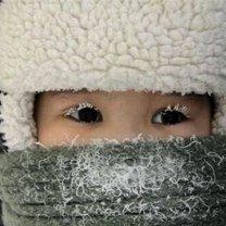 Зима идёт, зиме дорогу! фото