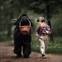 Детишки и собаки смешных фото приколов