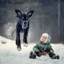 Детишки и собаки фото приколы