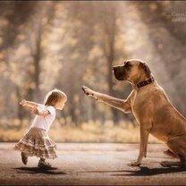 Фото приколы Детишки и собаки (9 фото)
