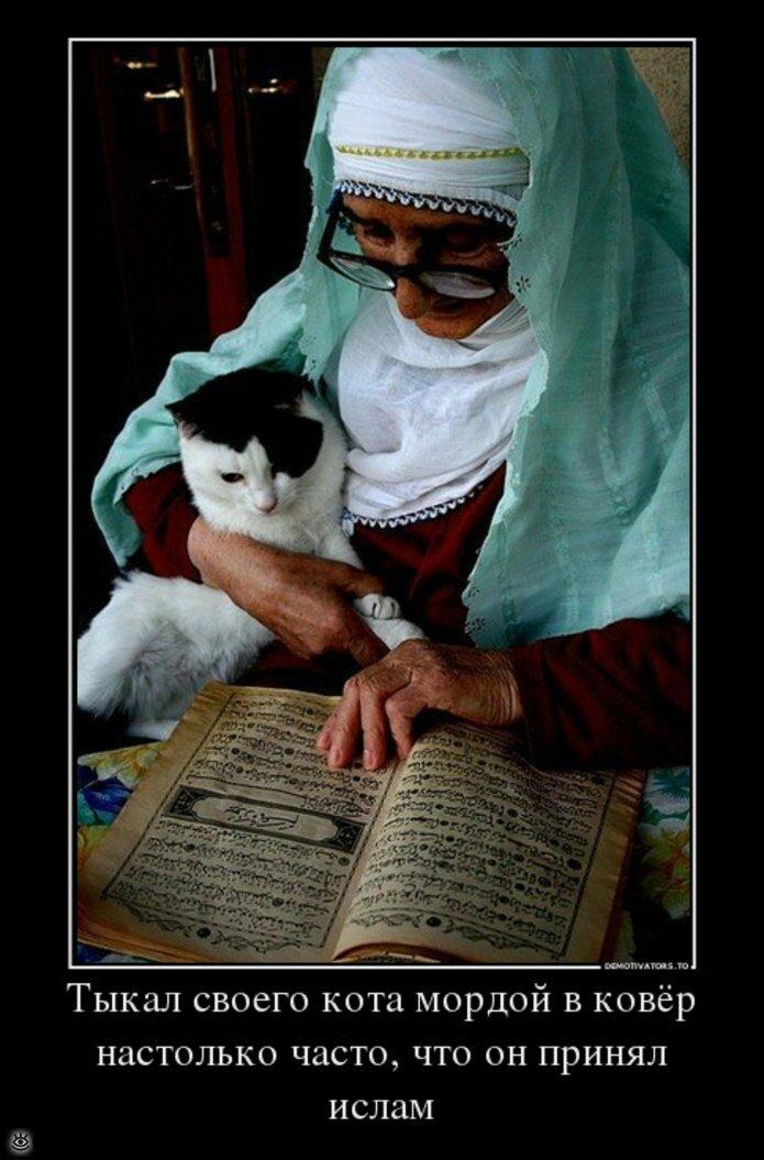 Музыкальные днем, ислам прикол картинки