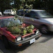 Фото приколы Автомобильные прикольности (45 фото)