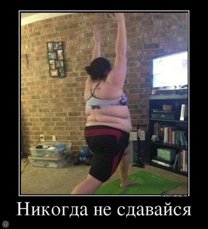 Про похудение фото смешные