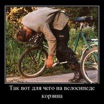 Фото приколы Укрепляйте иммунитет! (39 фото)