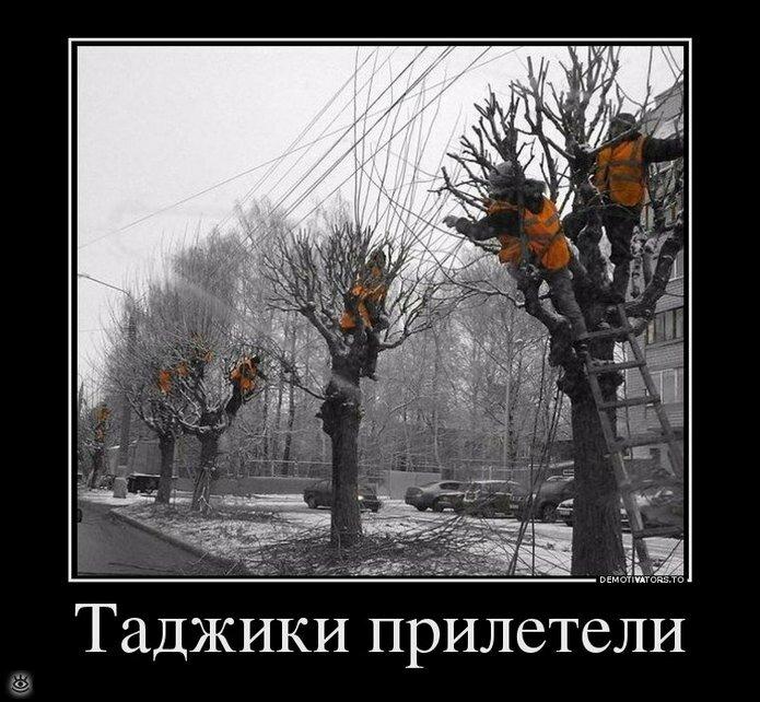 Красиво жить не запретишь! 3