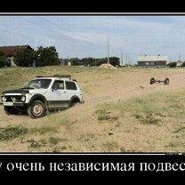 Фото приколы Красиво жить не запретишь! (21 фото)