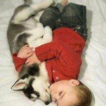 Дружба зверей и ребятишек фото приколы