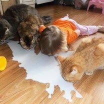 Фото приколы Дети во вкусе зверушки (15 фото)