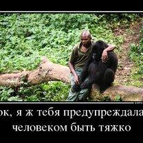 Фото приколы Будь умненьким и благоразумненьким! (18 фото)