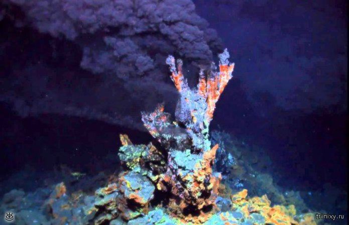 Если хотите знать больше о морских глубинах 8