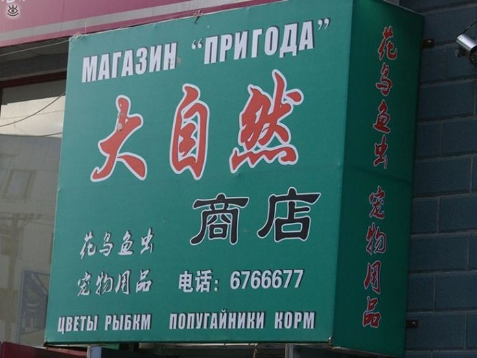 Нелепые вывески на русском в Китае 3
