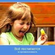 Фото приколы Езжай в тачке энтузиазма! (36 фото)