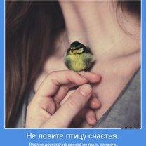 Сохраняй внутреннюю улыбку! фото приколы