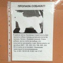 Фото приколы Русские приколы с изюминкой (27 фото)
