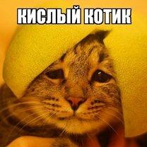 Фото приколы Айда смеяться над фото! (17 фото)
