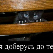 Фото приколы Ребятишки, не будьте трусишками! (22 фото)