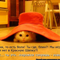Фото приколы Правильная и смешная котоматрица (33 фото)