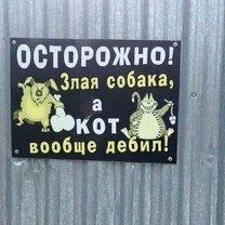 На заборе написано... смешных фото приколов
